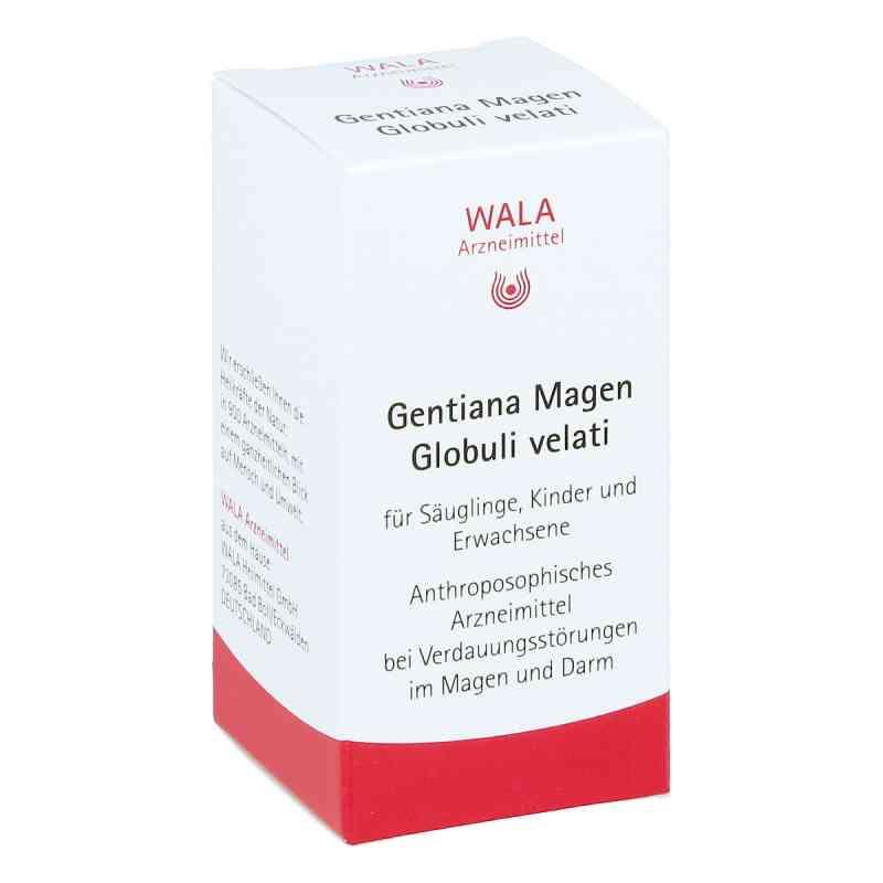 Gentiana Magen Globuli velati  bei juvalis.de bestellen