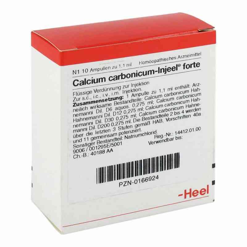 Calcium Carbonicum Injeel forte Ampullen  bei juvalis.de bestellen