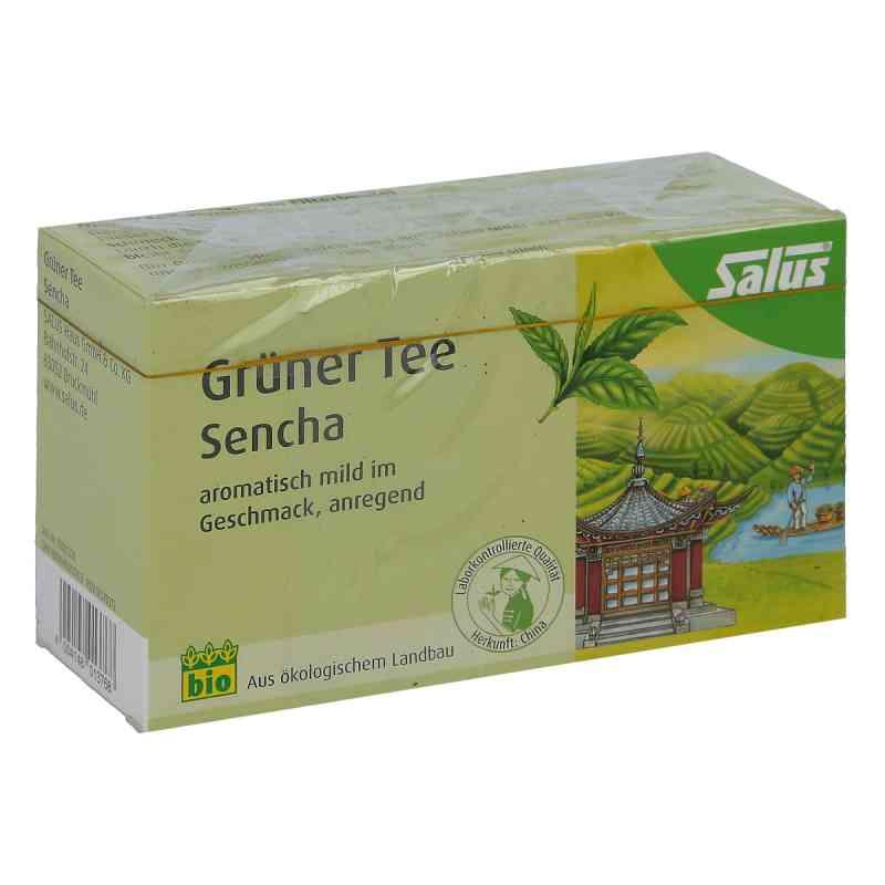 Grüner Tee bio Salus Filterbeutel  bei juvalis.de bestellen