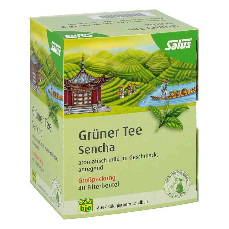 Grüner Tee bio Salus Filterbeutel Grosspackung  bei juvalis.de bestellen