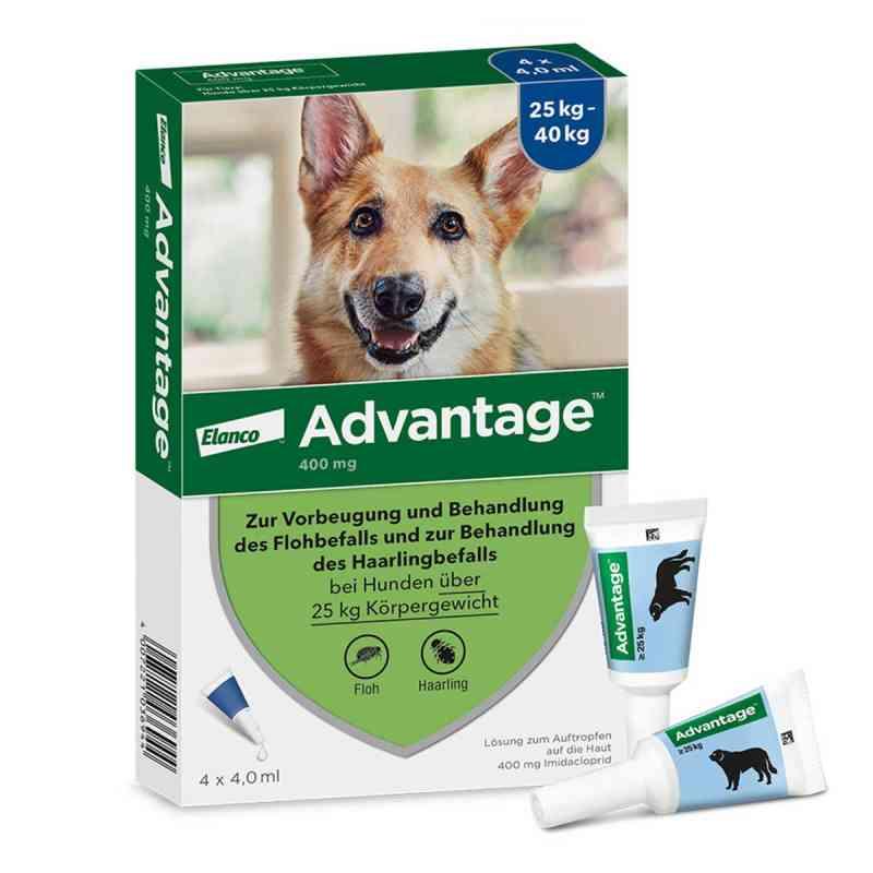 Advantage 400 für Hunde Lösung  bei juvalis.de bestellen