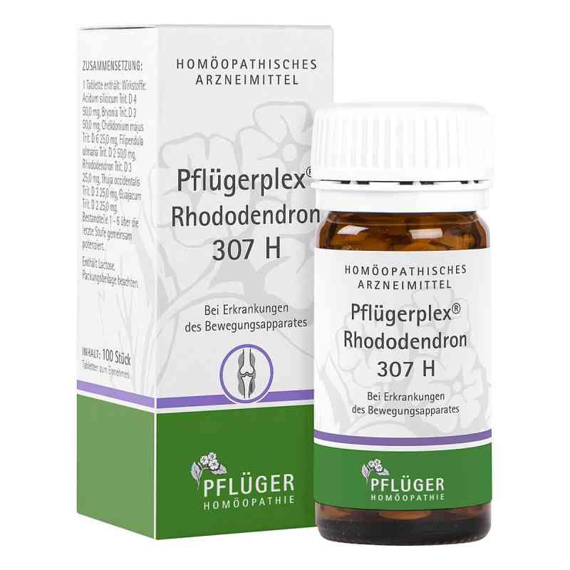 Pflügerplex Rhododendron 307 H Tabletten  bei juvalis.de bestellen