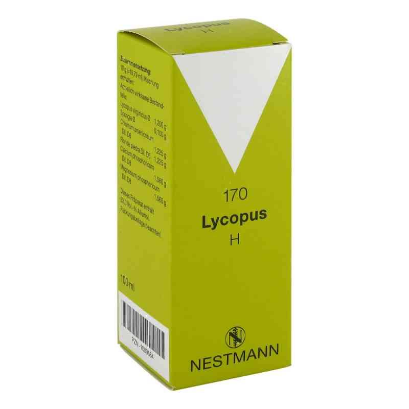 Lycopus H Nummer 170 Tropfen  bei juvalis.de bestellen