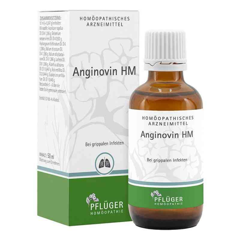 Anginovin Hm Tropfen  bei juvalis.de bestellen
