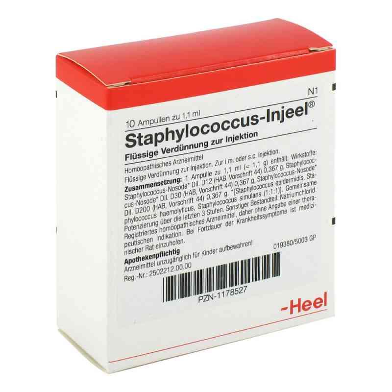 Staphylococcus Injeel Ampullen  bei juvalis.de bestellen