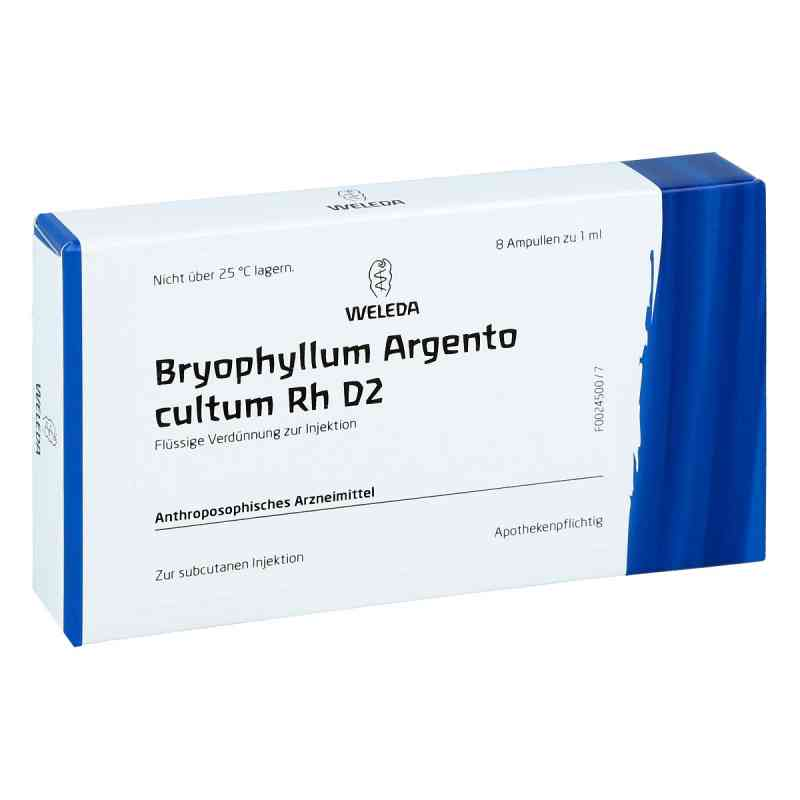 Bryophyllum Argento Cultum Rh D2 Ampullen  bei juvalis.de bestellen