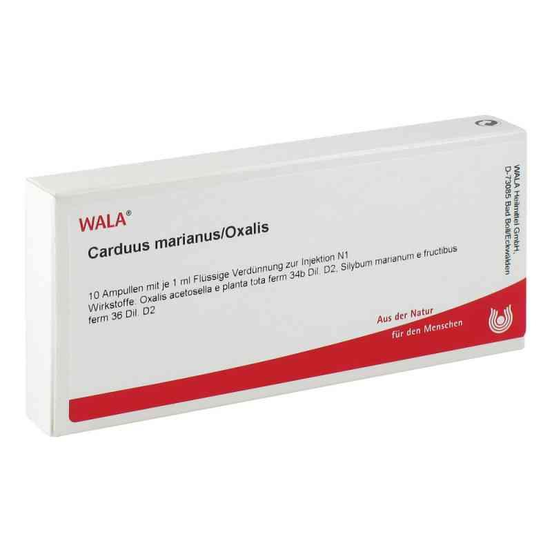 Carduus Marianus/ Oxalis Ampullen  bei juvalis.de bestellen