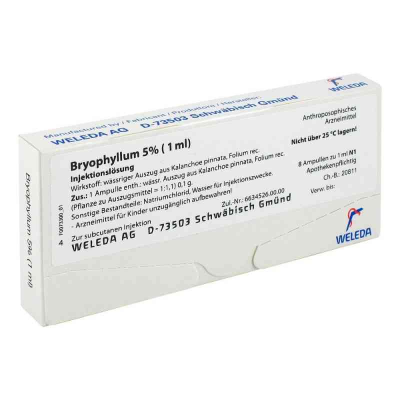 Bryophyllum 5% 1 ml Injektionslösung  bei juvalis.de bestellen