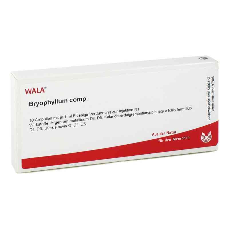 Bryophyllum Comp. Ampullen  bei juvalis.de bestellen
