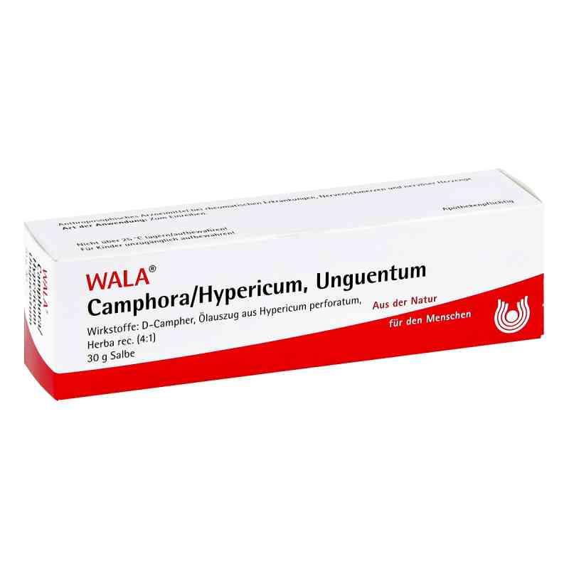 Camphora/hypericum Salbe  bei juvalis.de bestellen