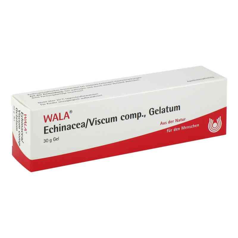 Echinacea/viscum compositus  Gelatum  bei juvalis.de bestellen