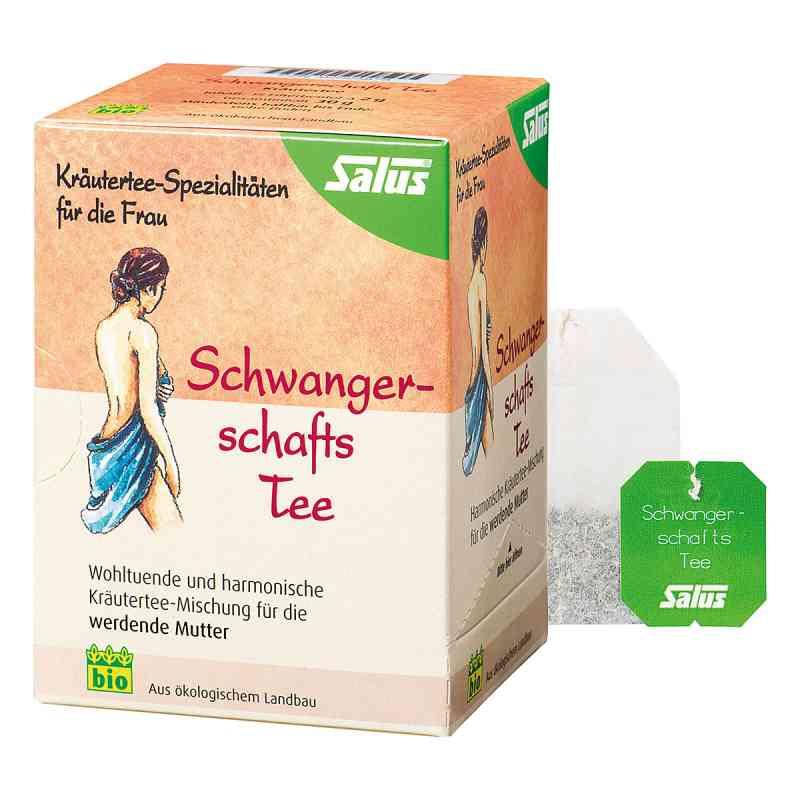 Salus Schwangerschaftstee Bio Filterbeutel  bei juvalis.de bestellen
