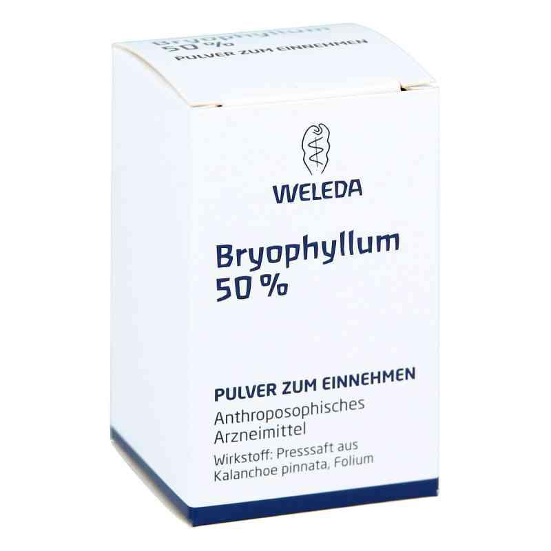 Bryophyllum 50% Pulver zum Einnehmen  bei juvalis.de bestellen