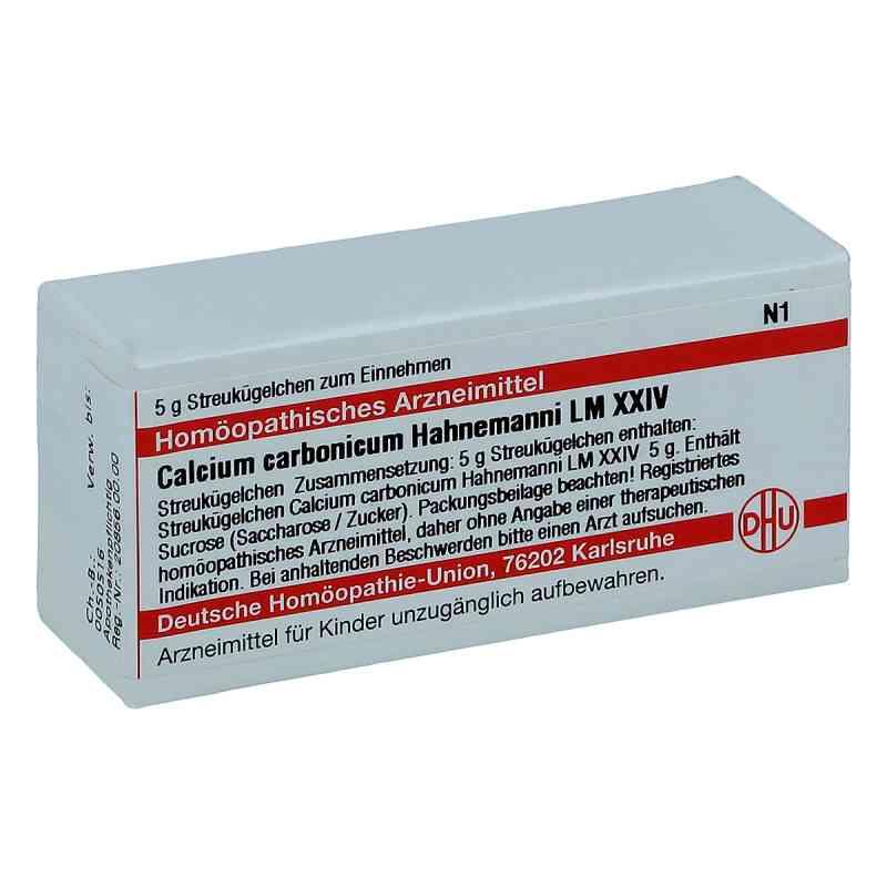 Lm Calcium Carb. Xxiv Globuli Hahnemanni  bei juvalis.de bestellen
