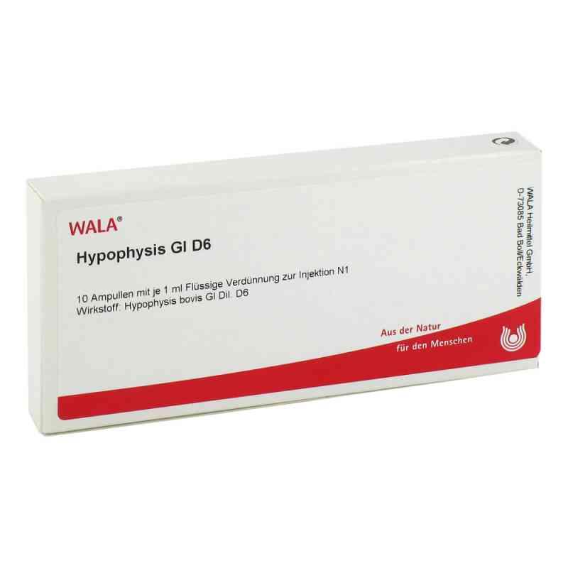 Hypophysis Gl D6 Ampullen  bei juvalis.de bestellen