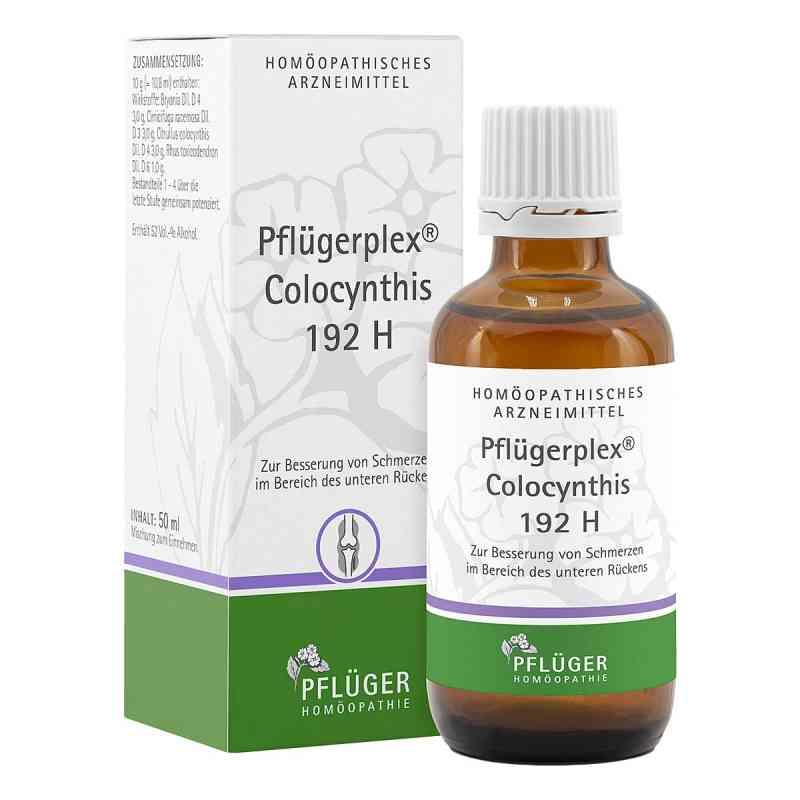 Pflügerplex Colocynthis 192 H Tropfen  bei juvalis.de bestellen