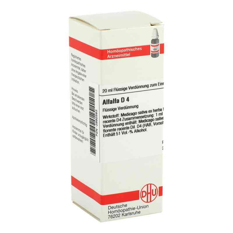 Alfalfa D4 Dilution  bei juvalis.de bestellen