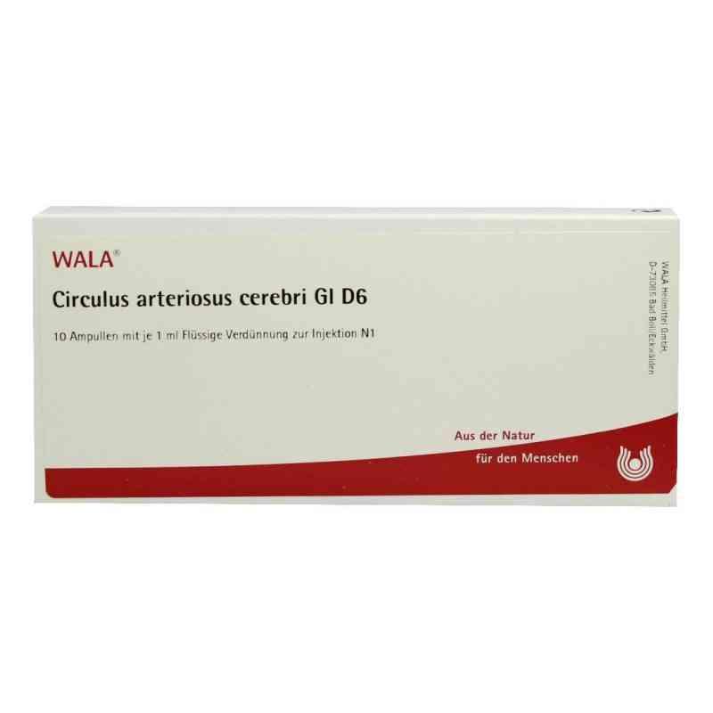Circulus Arterios. Cer. Gl D6 Ampullen  bei juvalis.de bestellen