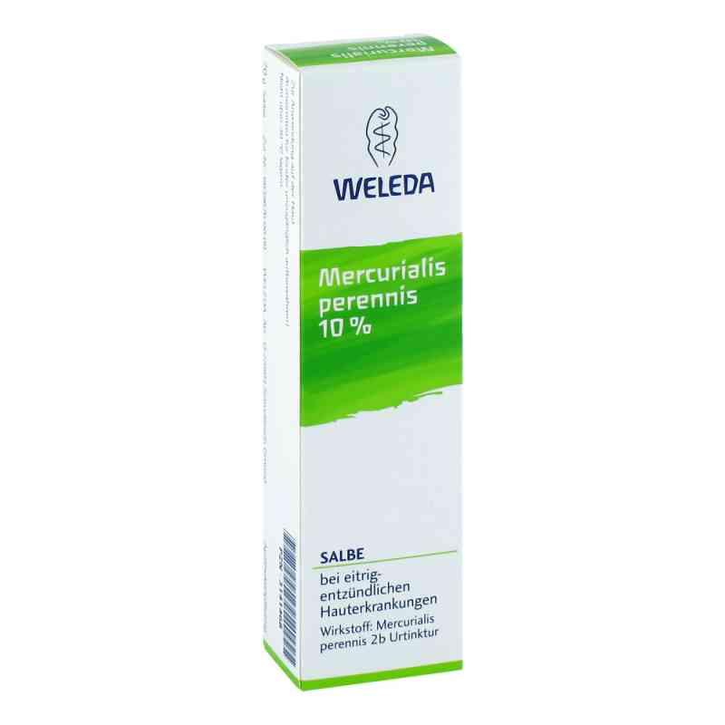 Mercurialis Perennis 10% Salbe  bei juvalis.de bestellen