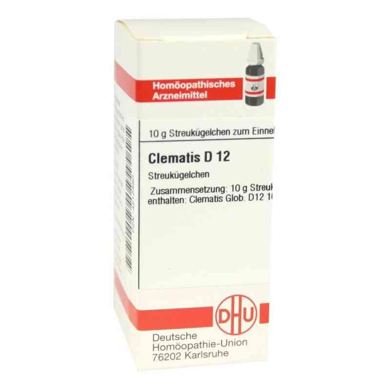 Clematis D12 Globuli  bei juvalis.de bestellen