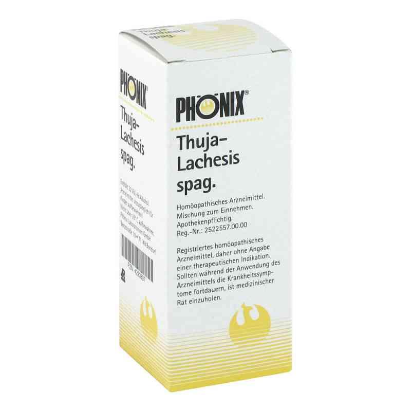 Phönix Thuja lachesis spag. Tropfen  bei juvalis.de bestellen