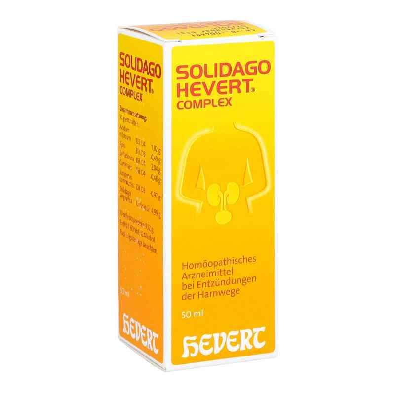 Solidago Hevert Complex Tropfen  bei juvalis.de bestellen
