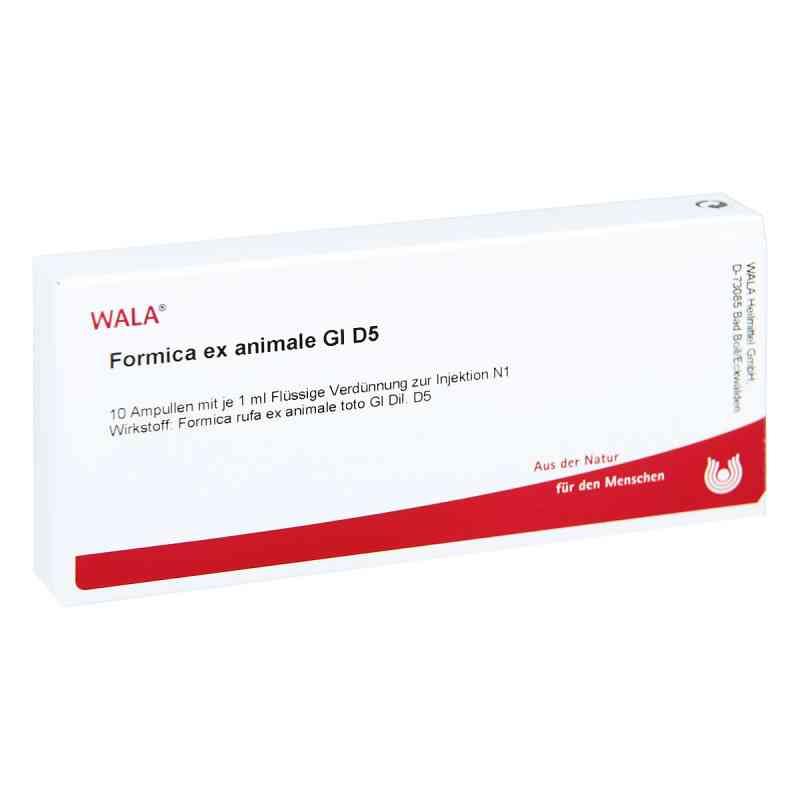 Formica Ex Animale Gl D5 Ampullen  bei juvalis.de bestellen