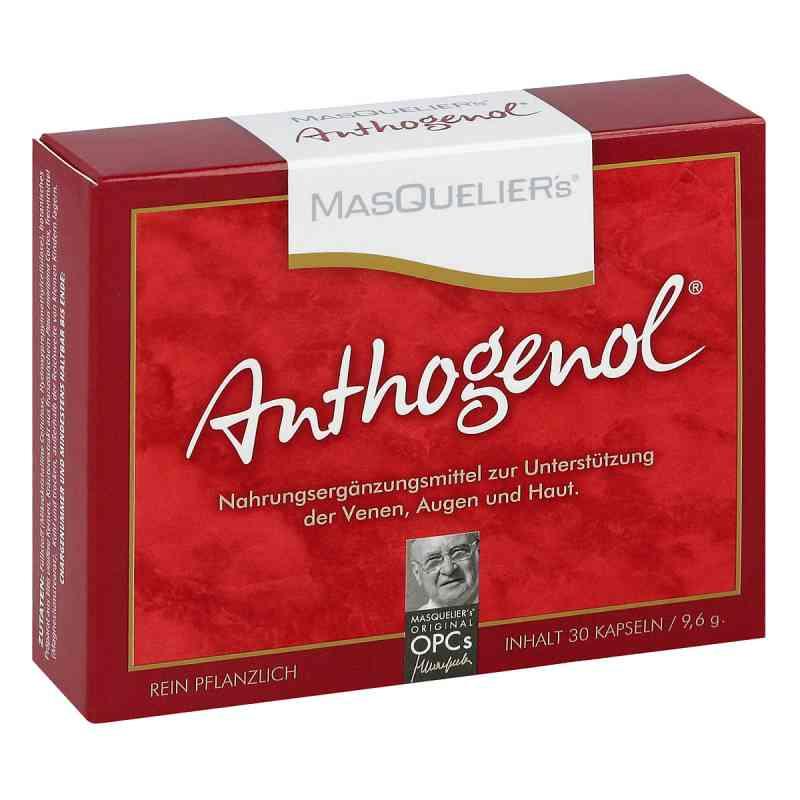 Anthogenol Masquelier Opc Kapseln  bei juvalis.de bestellen