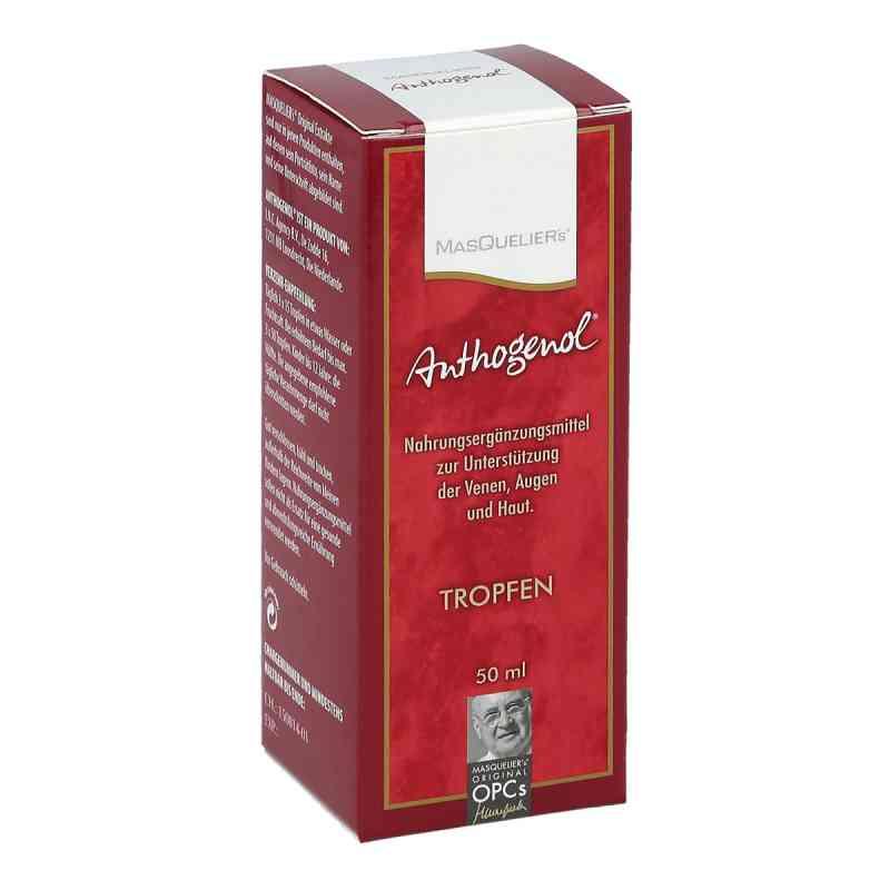 Anthogenol Masquelier Opc Tropfen  bei juvalis.de bestellen