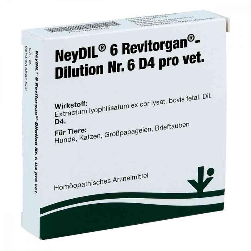 Neydil Nummer 6 Revitorgan Dilution d 4 pro veterinär Ampullen  bei juvalis.de bestellen