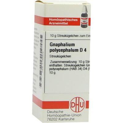 Gnaphalium Polyceph. D 4 Globuli  bei juvalis.de bestellen