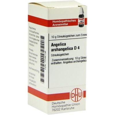 Angelica Archangelica D 4 Globuli  bei juvalis.de bestellen