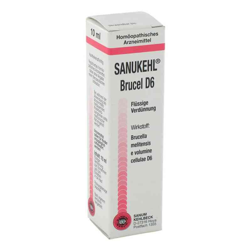 Sanukehl Brucel D 6 Tropfen  bei juvalis.de bestellen