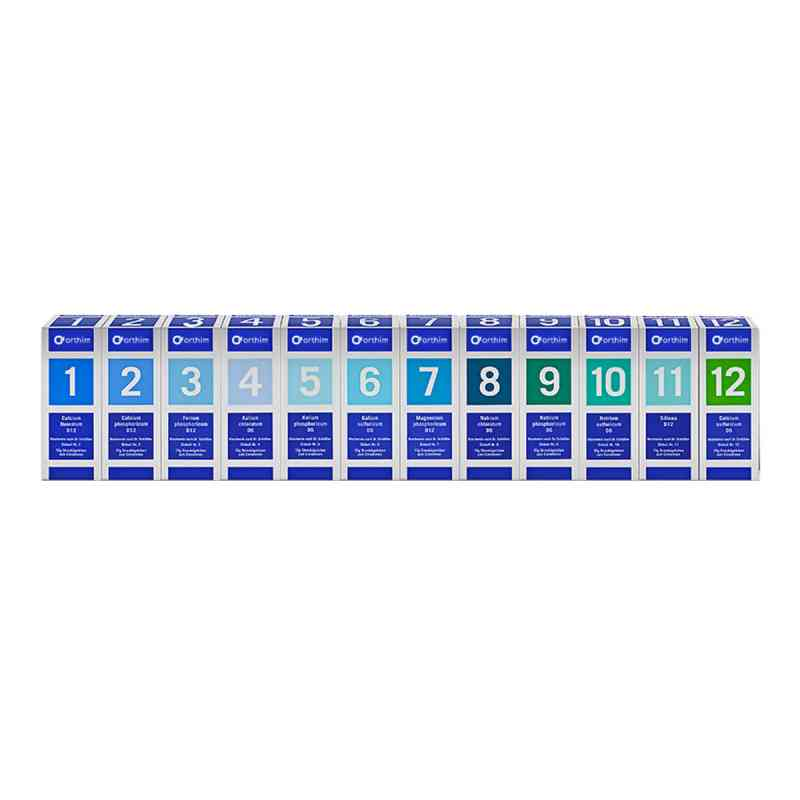 Biochemie Orthim Haus/reiseapo.1-12 12x15g Globuli  bei juvalis.de bestellen