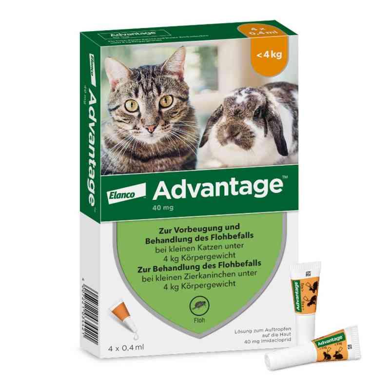 Advantage 40 mg für kl.Katzen und kl.Zierkaninchen  bei juvalis.de bestellen
