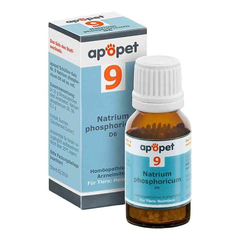 Apopet Schüssler-salz Nummer 9  Natrium phosphoricum D  6 veteri  bei juvalis.de bestellen