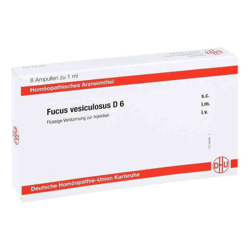Fucus Vesiculosus D 6 Ampullen  bei juvalis.de bestellen