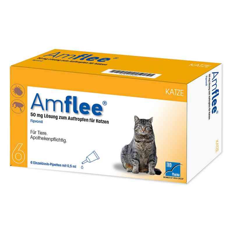 Amflee 50 mg Spot-on Lösung zur, zum Auftropfen für Katzen  bei juvalis.de bestellen