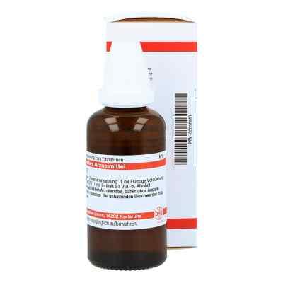 Lachesis D17 Dilution  bei juvalis.de bestellen