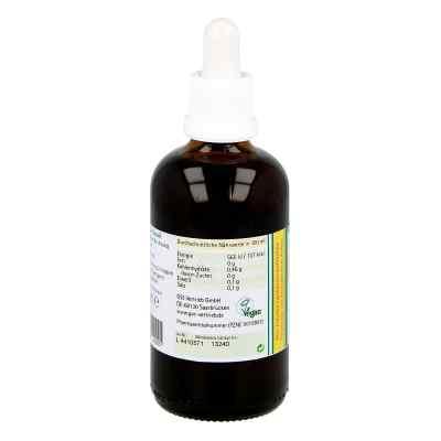 Koriander Extrakt Bio 23% V/v  bei juvalis.de bestellen