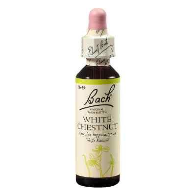 Bachblüten White Chestnut Tropfen  bei juvalis.de bestellen