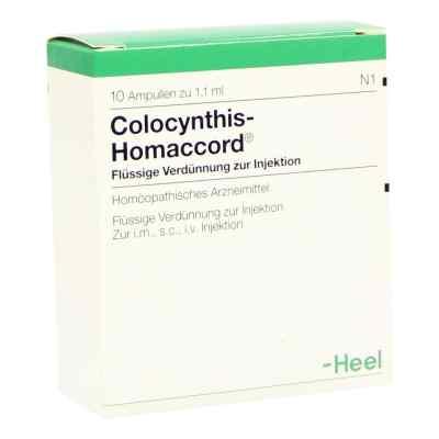Colocynthis Homaccord Ampullen  bei juvalis.de bestellen