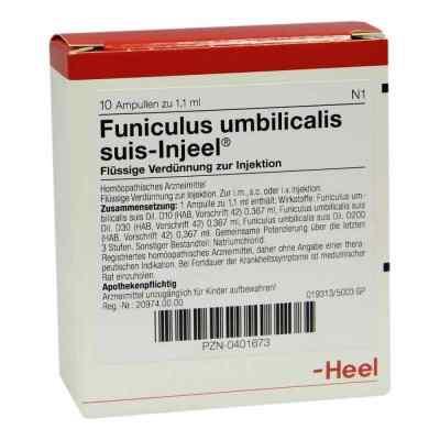 Funiculus Umbilicalis suis Injeel Ampullen  bei juvalis.de bestellen