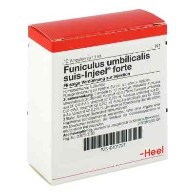Funiculus Umbilicalis suis Injeel forte Ampullen  bei juvalis.de bestellen