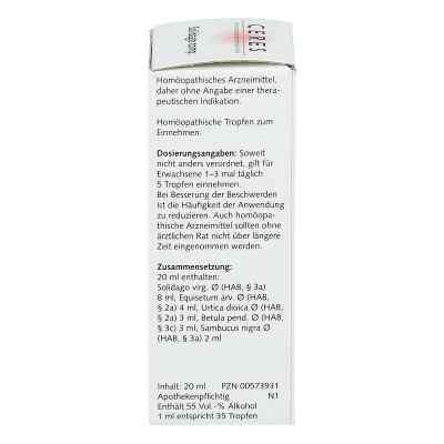 Ceres Solidago compositus  Tropfen  bei juvalis.de bestellen