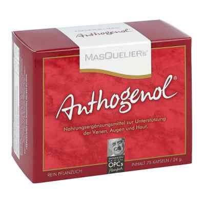 Opc Original Masqueliers Anthogenol Kapseln  bei juvalis.de bestellen