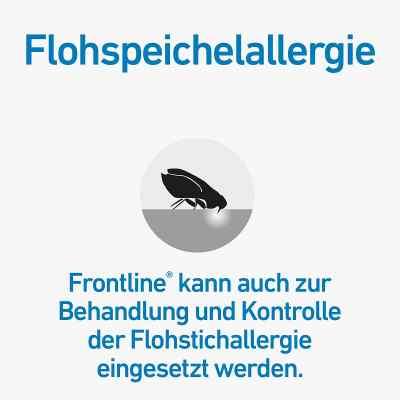 Frontline Spot on Hund 10 veterinär Lösung gegen Floh und Zecke  bei juvalis.de bestellen