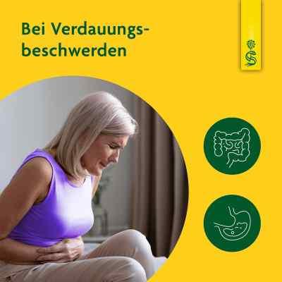 Artischockensaft Schoenenberger  bei juvalis.de bestellen