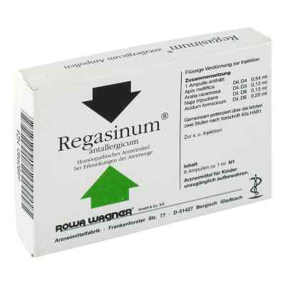 Regasinum Antallergicum Ampullen  bei juvalis.de bestellen