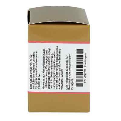 Vitamin B12 Kapseln  bei juvalis.de bestellen